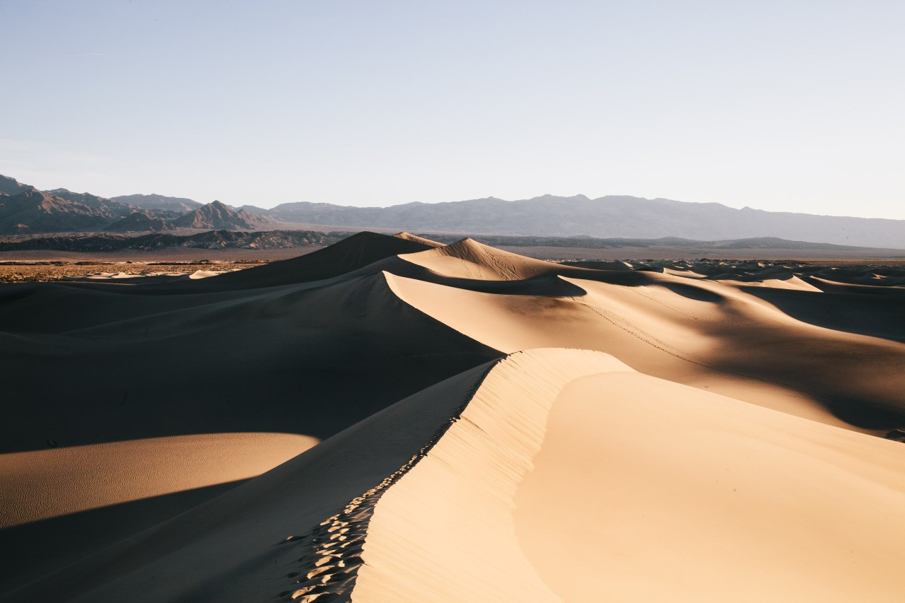 Dunes in the desert.