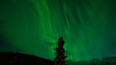 Northern lights over Denali National Park, USA