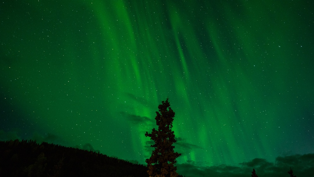 Northern lights over Denali National Park, USA