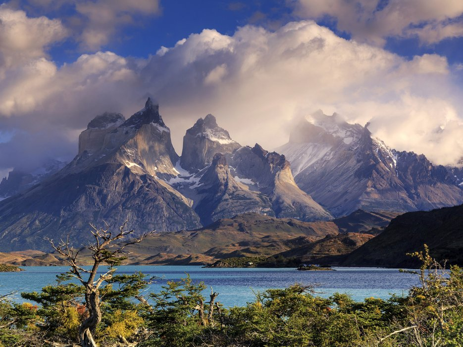 Torres Del Paine National Park Patagonia Chile Wildlife Archives