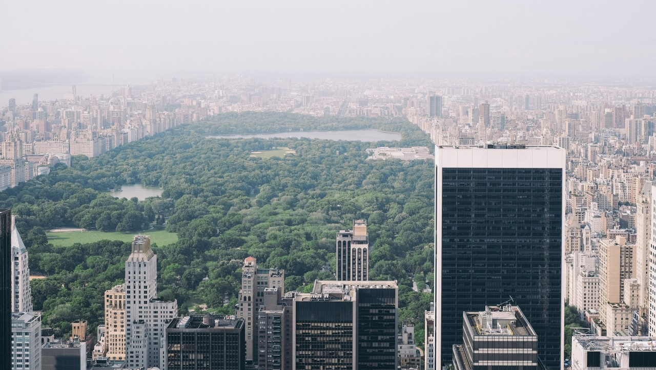 Central Park, view from Rockefeller Center, New York, United States