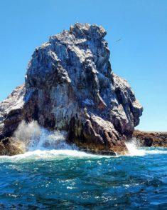Lion's face (bottom right) on Marieta Island cliff