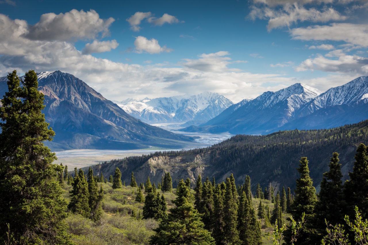 Into the wild Canada