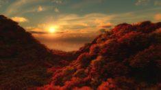 Beautiful sunset in autumn