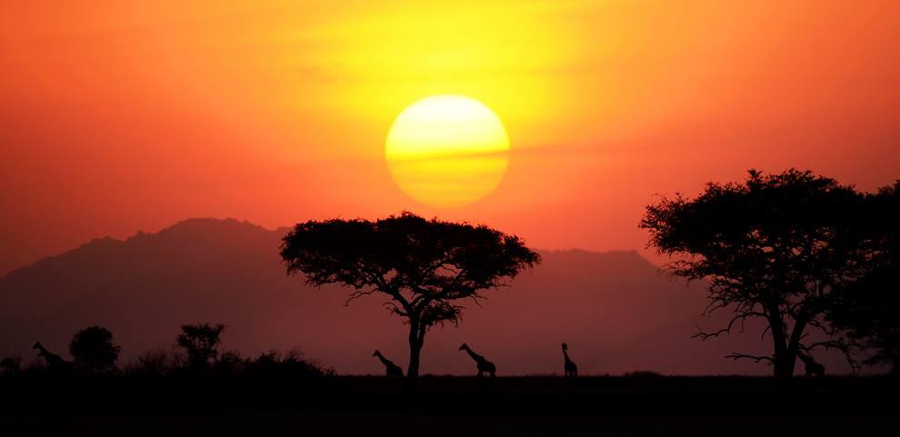 Tanzania, by Essdras M Suare