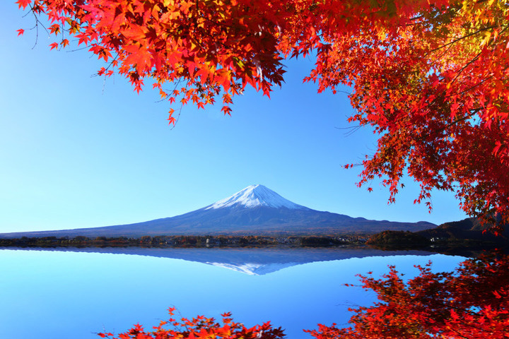 Japan's Autumn Colors