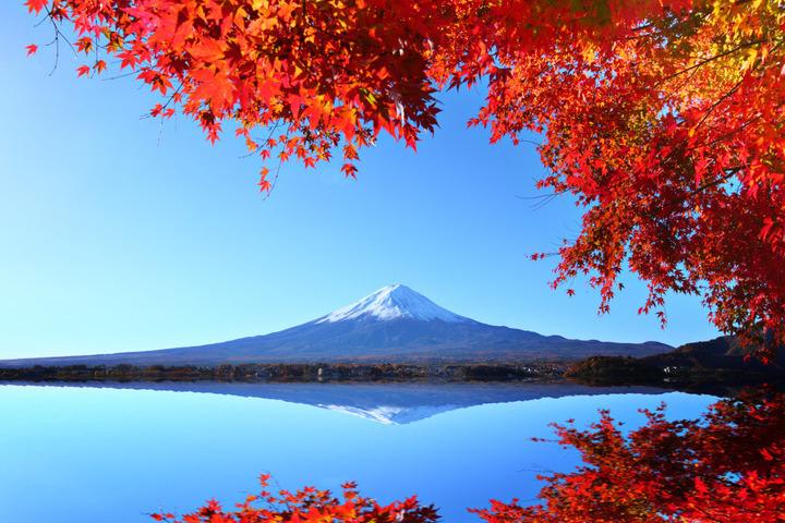 Japan's Autumn Colours
