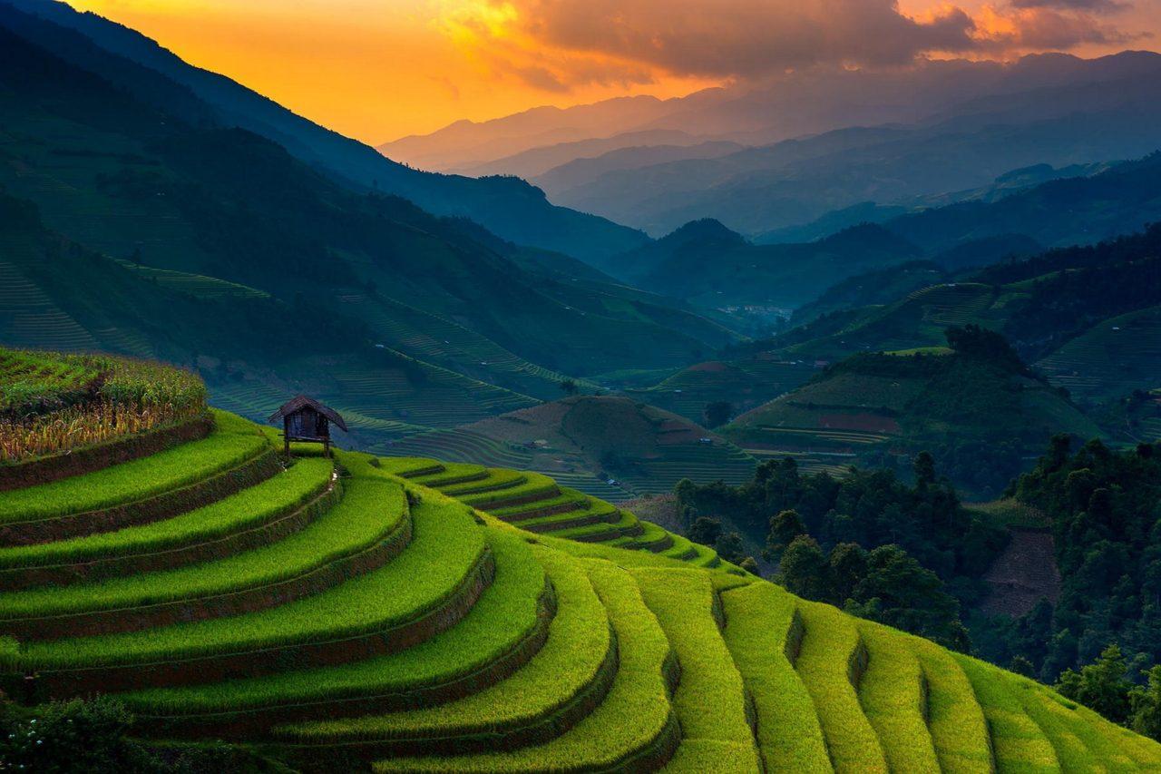 Landscape in Vietnam | Wildlife Archives