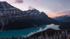 Lake Peyto, Canada. Photo: Mark Basarab