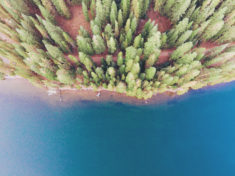 Forest from above – Most Beautiful Picture of the Day: April 16, 2017 – Most Beautiful Picture