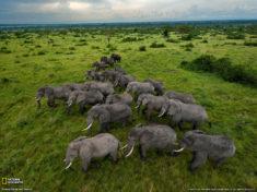 Ouganda • Fiche pays • PopulationData.net