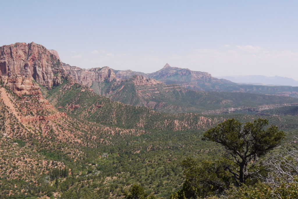 Zion Valley, Utah - Most Beautiful Picture of the Day