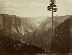 Yosemite, California, 1865 – Most Beautiful Picture of the Day: August 24, 2017 – Most Beautiful ...