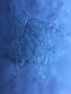 Cristaux de neige – Brut de Pomme