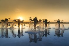 Hon Khoi Salt Fields, Vietnam – Most Beautiful Picture