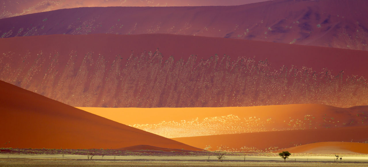 Namib-Naukluft National Park sand dunes – Most Beautiful Picture