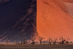 Great Wall of Namib – Most Beautiful Picture