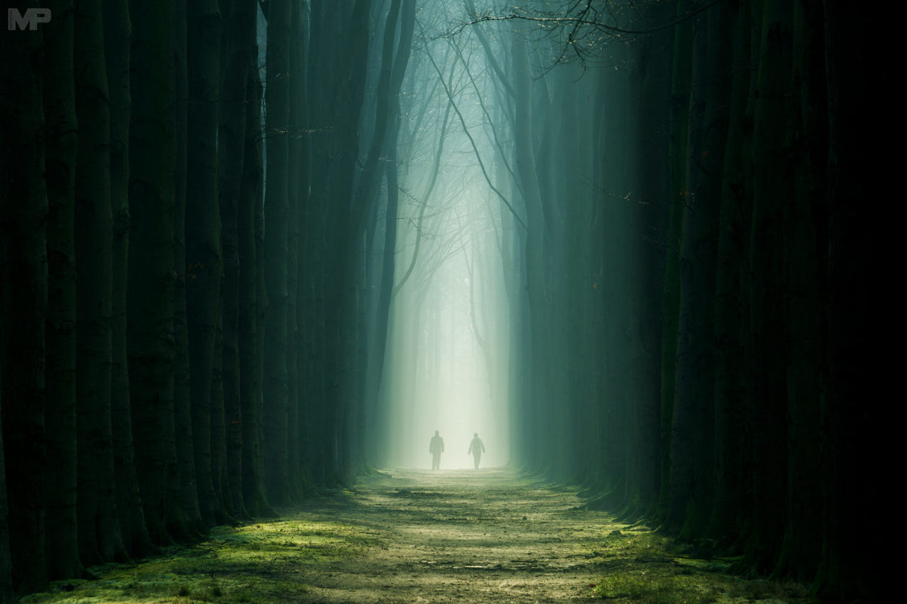 Walk of Light – Most Beautiful Picture