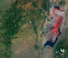 Lake Natron, Tanzania – Most Beautiful Picture