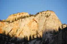 Zion National Park – Brut de Pomme