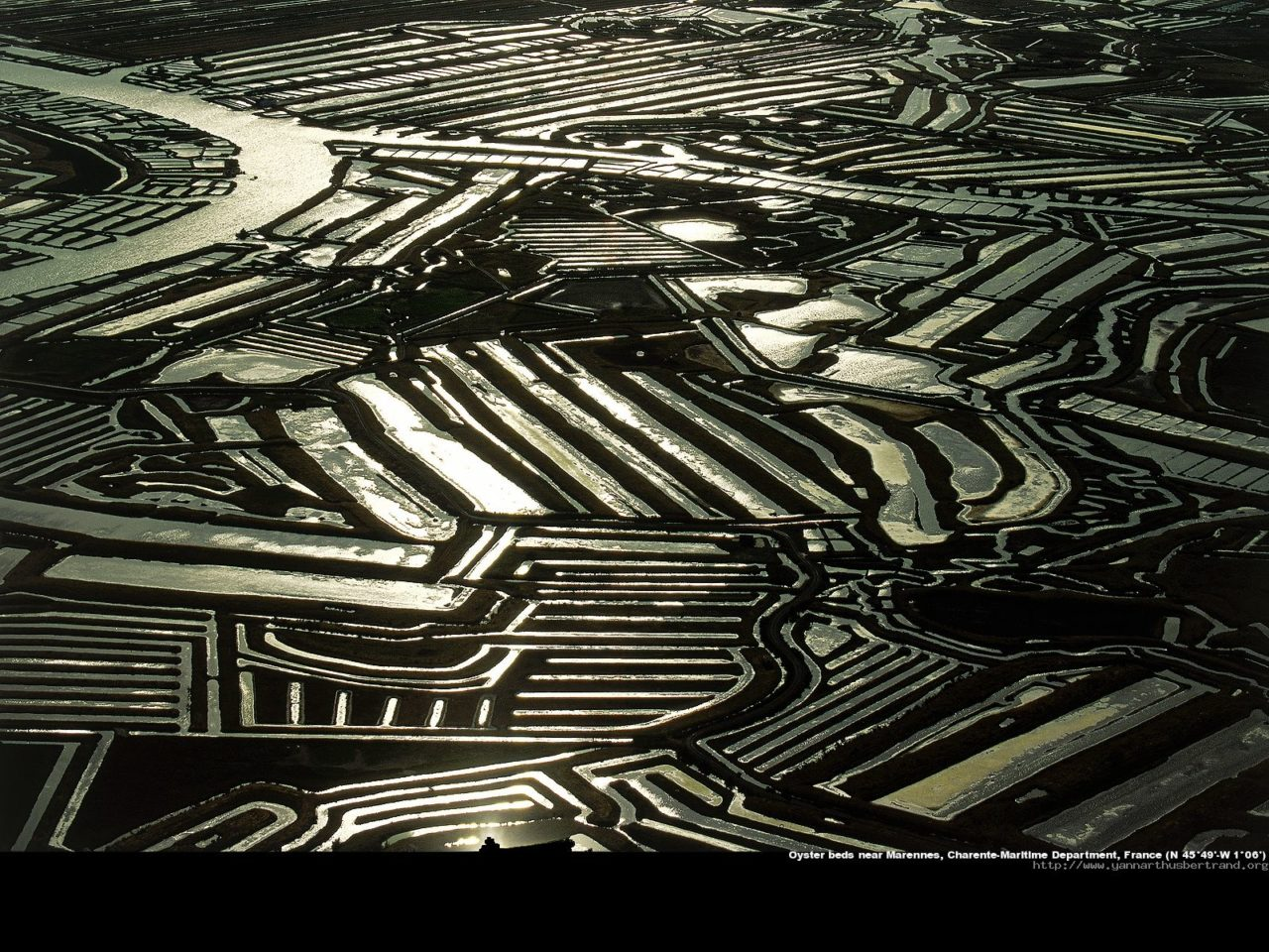 Oyster beds, Marennes, France – Most Beautiful Picture