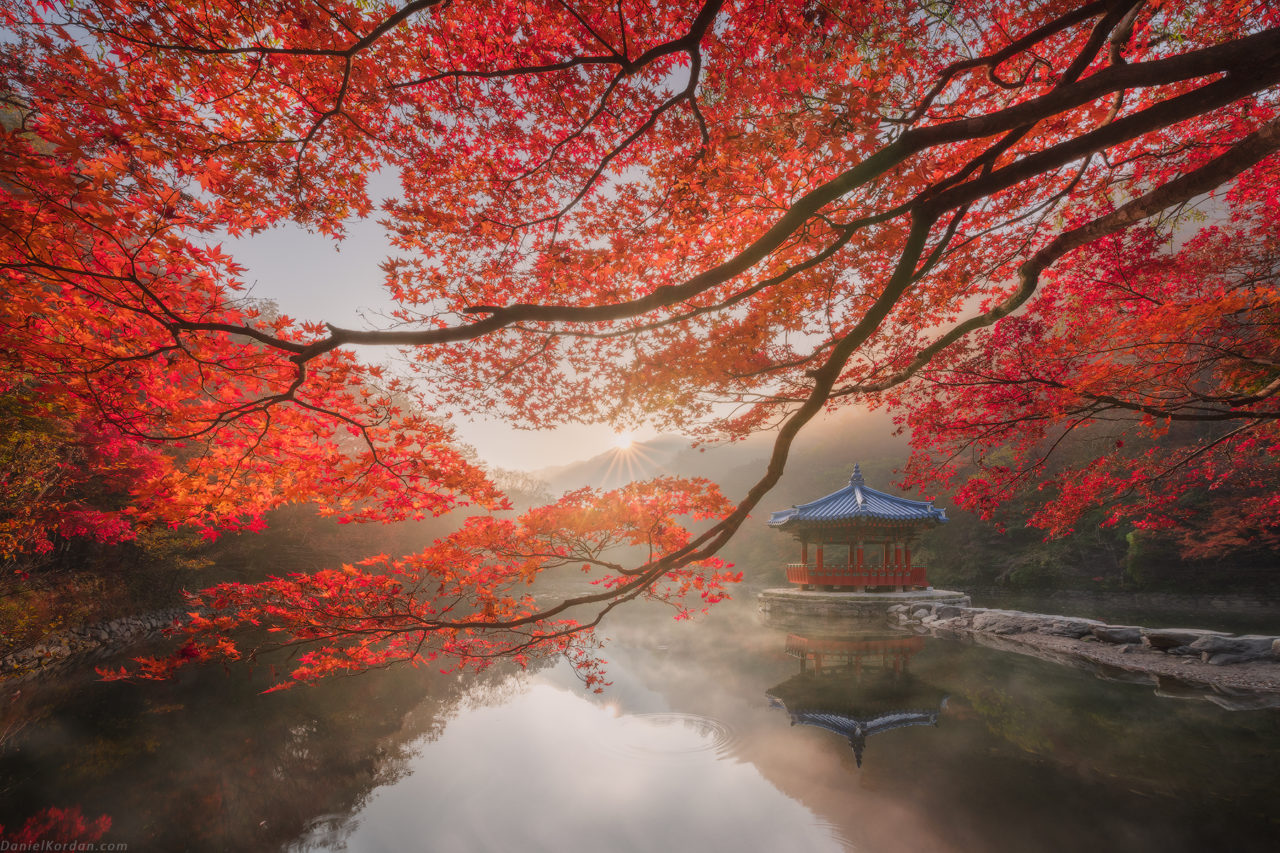 Autumn, Korea – Most Beautiful Picture
