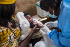 4500 enfants de moins de cinq ans sont morts de la rougeole depuis le début de l'année • Populat ...
