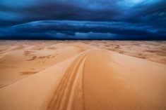 Desert storm, Mongolia – Most Beautiful Picture