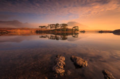 Pine Island, Connemara – Most Beautiful Picture