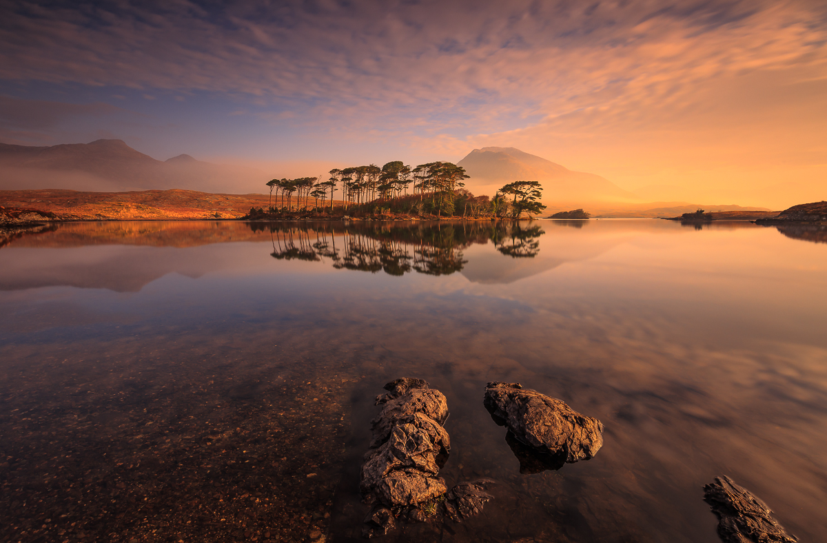 Pine Island, Connemara – Most Beautiful Picture