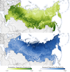 Mapping Moose Populations in Russia | MapsRoom