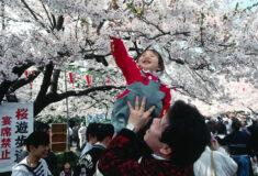 Le Japon perd toujours des habitants • PopulationData.net